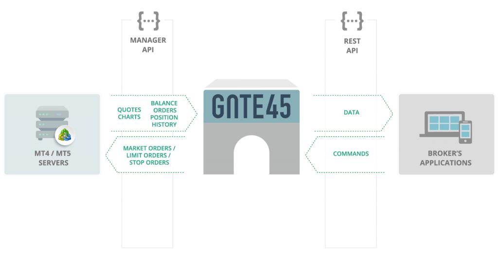 Devexperts Gate45 for mt4 broker